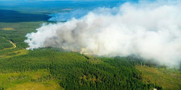 Orman yangınını söndürmek için bomba attılar!