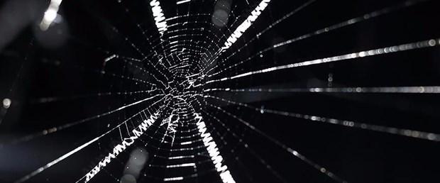 Örümcek ipeğinden hassas işitme cihazı üretimi