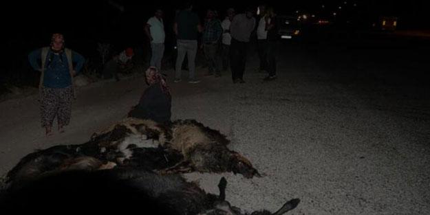 Otomobil keçi sürüsüne daldı