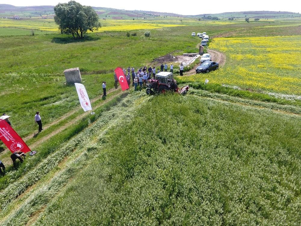 (Özel) Anıza Direkt Ekimi ile çiftçiler hem üründe hem de mazotta kar edecek
