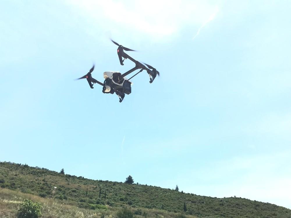 (Özel) Bursa kestanesi drone ile korunacak