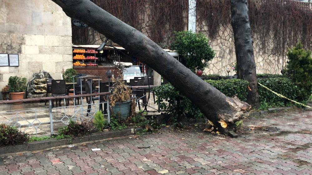 (Özel) Çatısına ağaç düşen 234 yıllık tarihi sebil zarar gördü