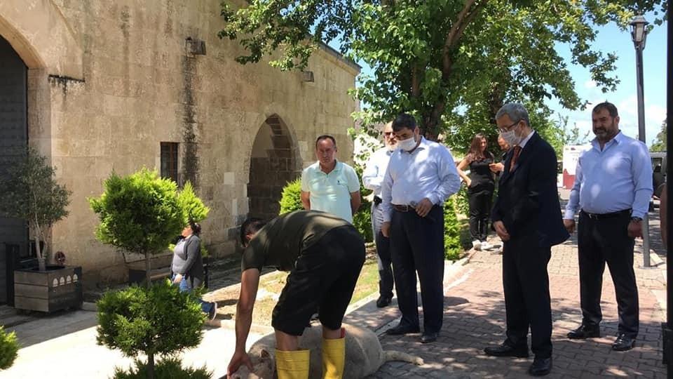 Payas'ta Cuma namazı öncesi şükür kurbanı kesildi
