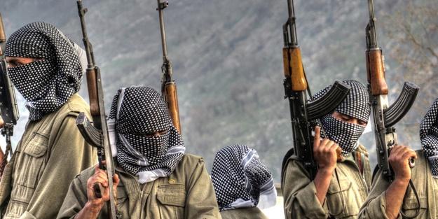 PKK'nın asıl amacı deşifre oldu