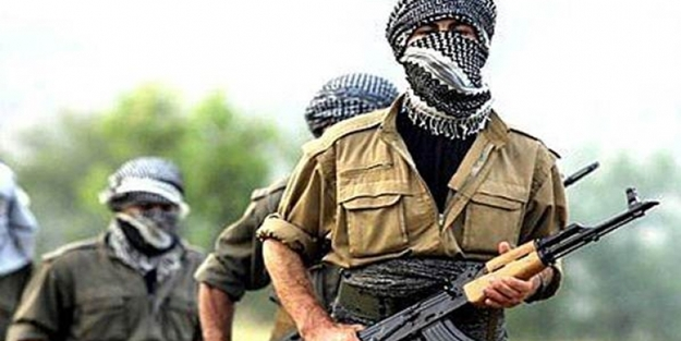PKK'nın gerçek yüzünü gören terörist teslim oldu