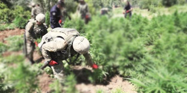 PKK'nın kurduğu uyuşturucu ağının hedefi Türkiye...