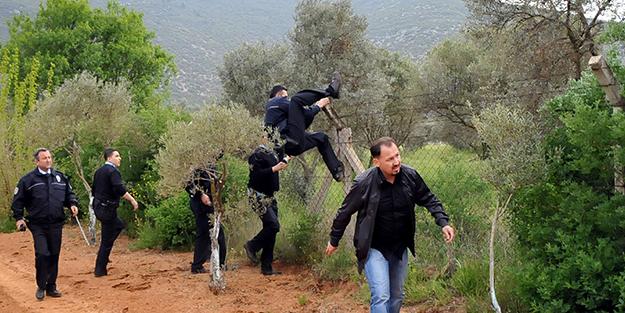 Ekinler arasında hırsız polis kovalamacası