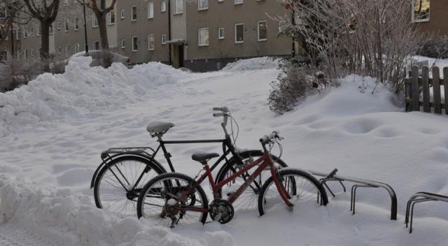 Polonya'da soğuk havadan 53 kişi hayatını kaybetti