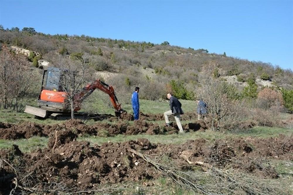 Porsuk Barajı Havzası ağaçlandırılıyor