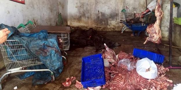 Ramazan'da millete domuz eti yedireceklerdi!