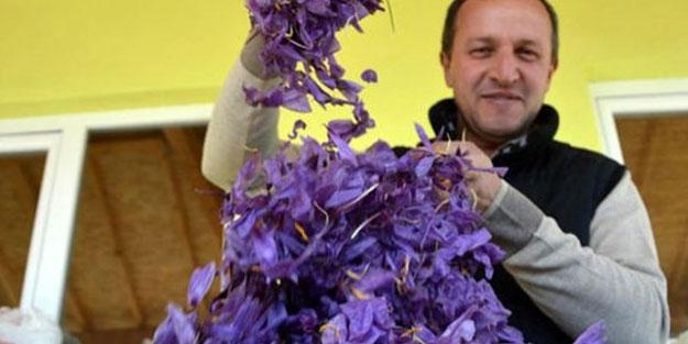 'Safran'ın kilosunu 45 bin Lira'dan satıyor