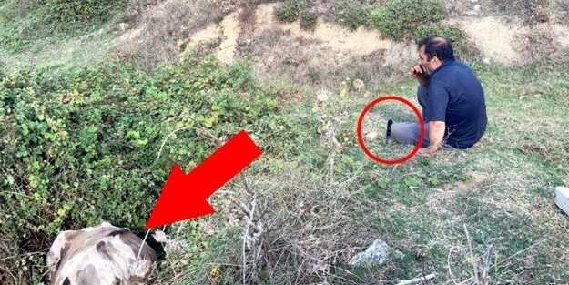 Sahibinin başında bıçakla beklediği ineği kesilmekten itfaiye kurtardı