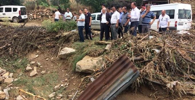 Salihli'de dolu ve sağanakta 6 küçükbaş hayvan öldü
