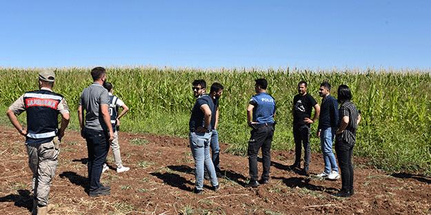 Şanlıurfa'da 17 yabancı uyruklu yakalandı