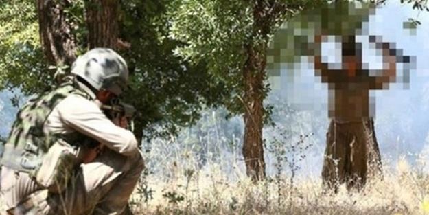 İkna çabaları PKK'yı eritiyor!