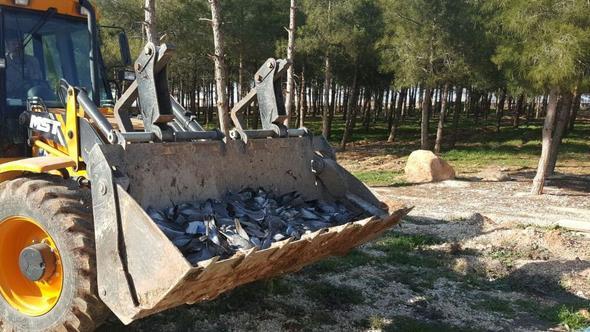 Şanlıurfa'da korkutan gelişme! Binlerce kuş öldü
