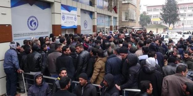 Şanlıurfa'da şaşırtan Suriyeli izdihamı