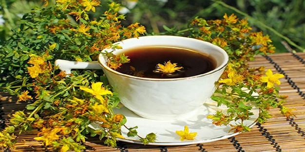 Sarı kantaron nedir, faydaları nelerdir? Sarı kantaron çayı nasıl yapılır?