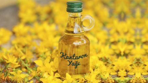 Sarı kantaron yağı ne işe yarar? Sarı kantaron yağı faydaları ve zararları