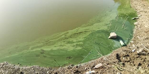 Sazlıdere Barajı'nda endişelendiren görüntü