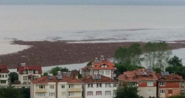 Sel felaketi sonrası Orduluları üzen görüntü