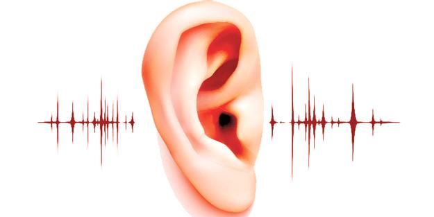 'Sesler ve Boyutlar'