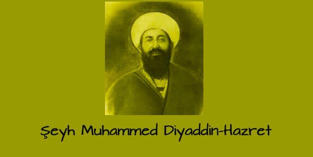 Şeyh Muhammed Diyauddin kimdir? Nakşibendi Şeyhi Muhammed Diyauddin hayatı biyografisi