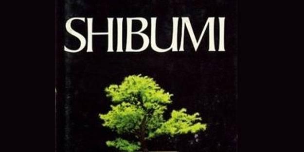 Shibumi kitabı konusu ne? Shibumi kitabı neyi anlatıyor? Shibumi nerede geçiyor?