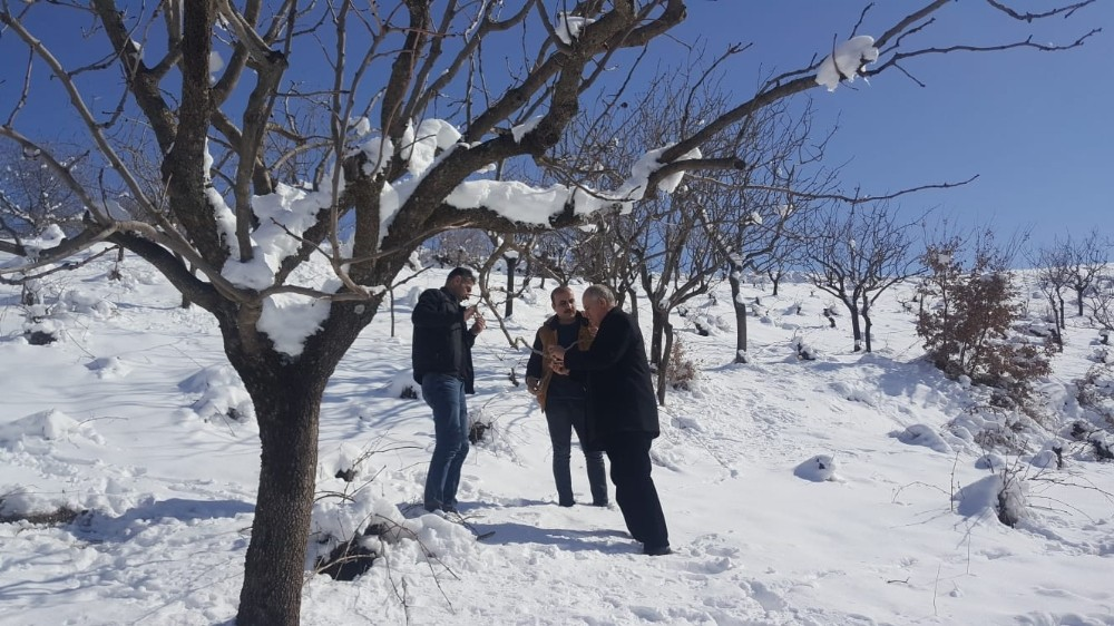 Siirt'te bağ ve bahçelerde çalışma yapıldı
