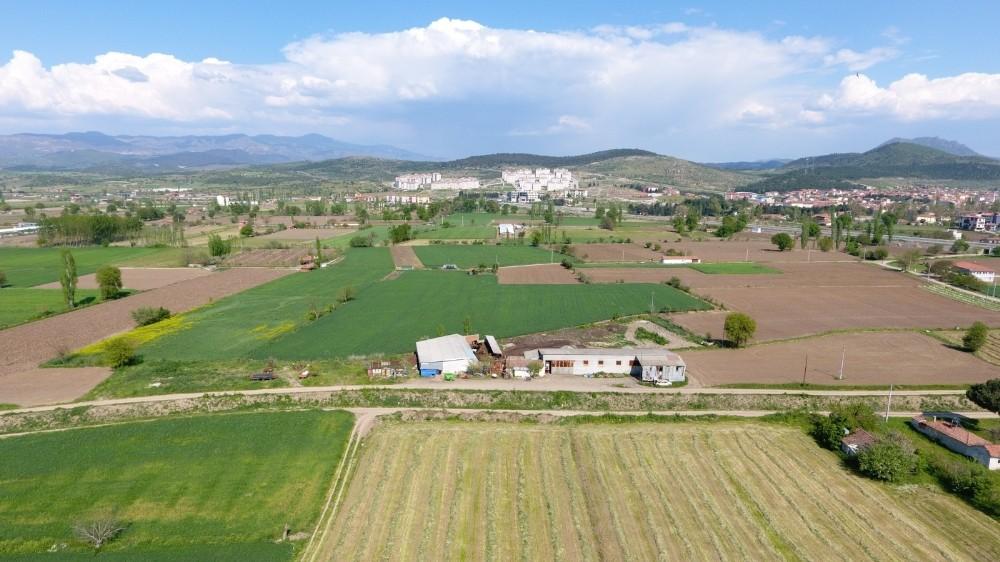 Sındırgı'da tarım seferberliği