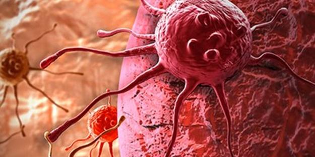 Sivrisineğin koklama duyusundan kanser dedektörü geliştirildi