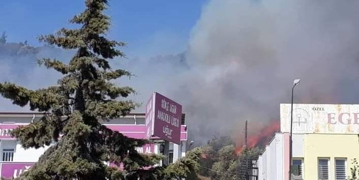 Söke'de orman yangını!