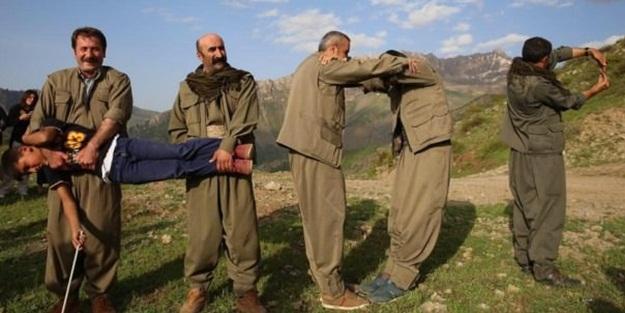 Son 2 yılda Şırnak'ta kaç PKK'lı teslim oldu?