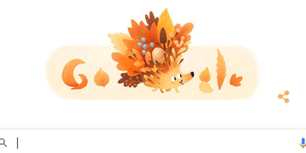 Sonbahar geldi! Google düğmeye bastı... Milyonlar tıkladı