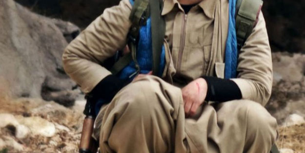 Suruç'ta PKK/PYD'li terörist yakalandı