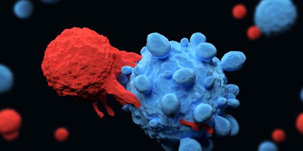 T hücresinin koronavirüsle savaştığı ortaya çıktı