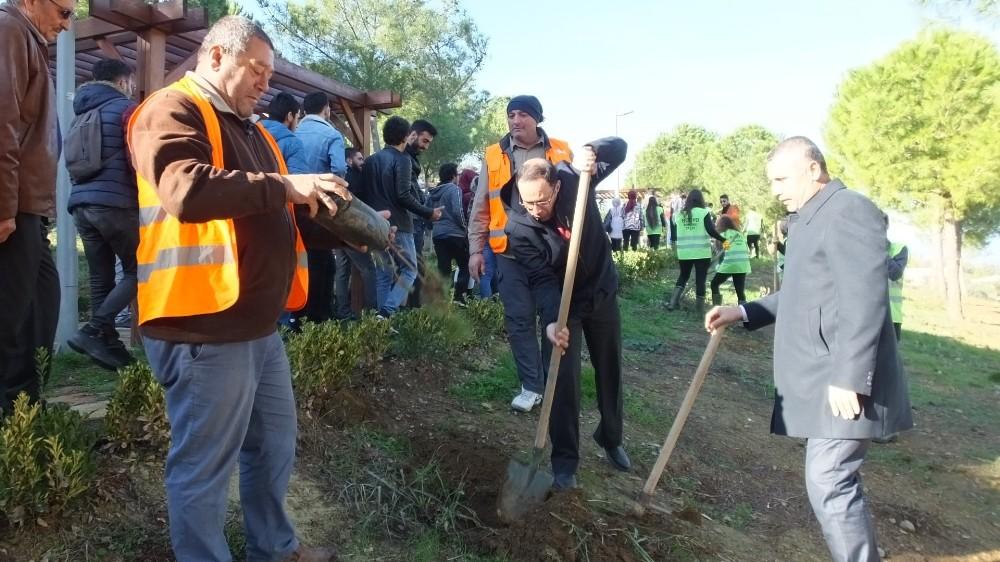 Takım Çalışması Dersinde fıstık çamlarını toprakla buluşturdular