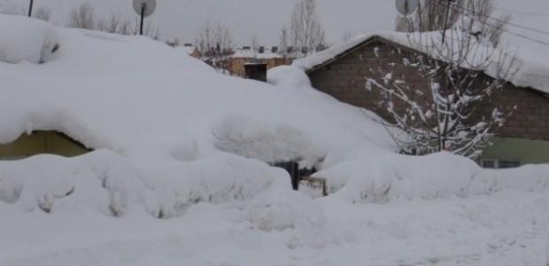 Tipi hayatı felç etti: 229 köy yolu ulaşıma kapandı