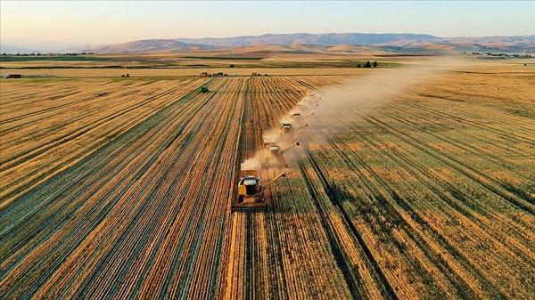 Tarım Bakanlığı personel alımı başvuru
