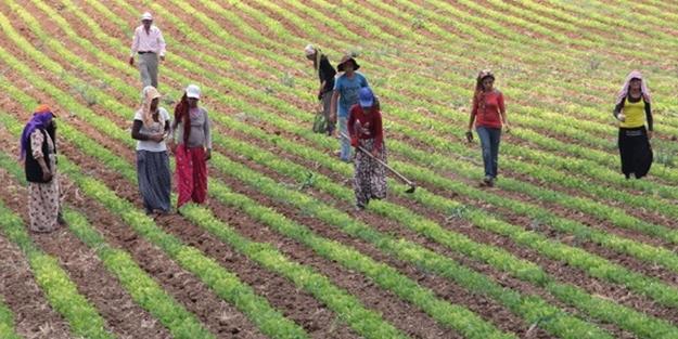 Tarımsal destek ödemeleri ne zaman yapılacak? Tarımsal destek ödemeleri yattı mı?
