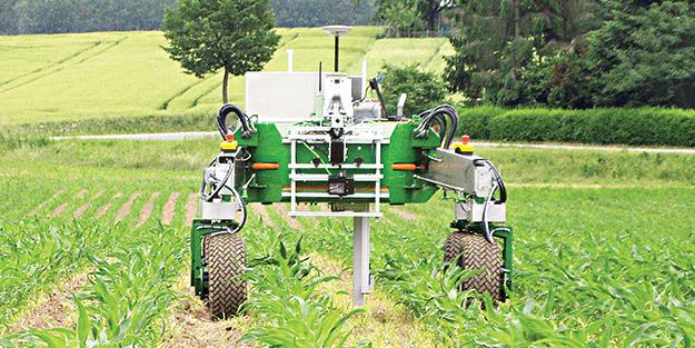 Tarlada hasadı artık robotlar yapacak