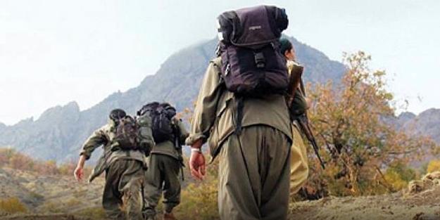 Terör örgütü PKK'da çözülme devam ediyor! Teslim oldular