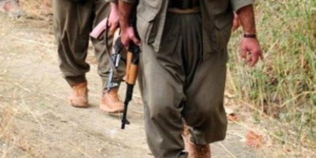 Terör örgütü PKK'nın dağ kadrosundaki terörist tutuklandı