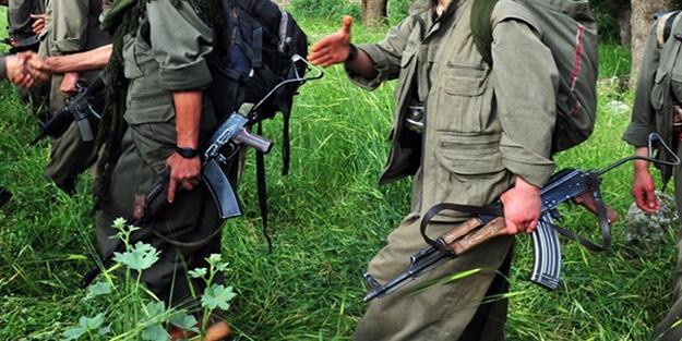 TERÖR ÖRGÜTÜ PKK'YA HAKKARİ'DE DARBE VURULDU