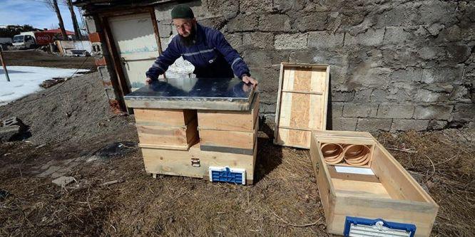 Arı kovanının şeklini değiştirince üretim iki katına çıktı
