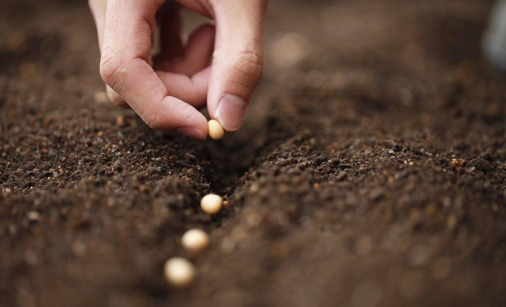 'Tohuma hakim olan dünyaya hakim olur'