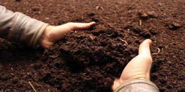 Toprak ve gübre parası verilen iller hangileri?