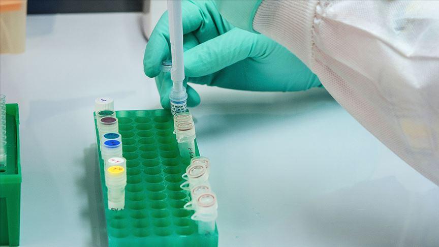 Türk bilim insanları Kovid-19'a karşı başvurulan sıtma ilacı 'klorokin'i sentezledi
