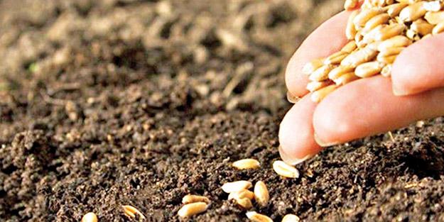 Türk tohumları 85 ülkenin toprağında
