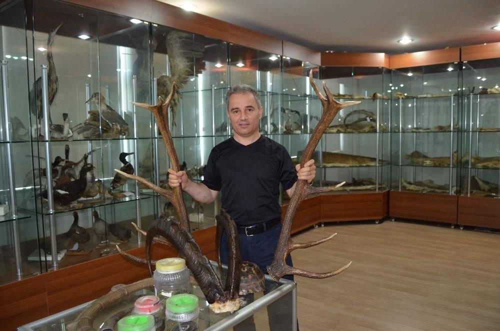 Türkiye av turizminden 4 milyon dolarlık pay alıyor